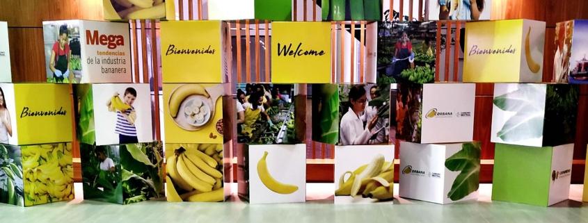 Centro Aceros Cogreso Internacional del banano 2019